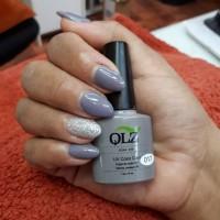 QLZ 017